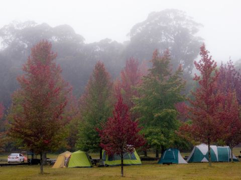 cathedral reserve camping area, Mount Wilson