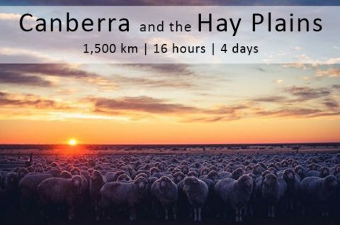 hay plains poster