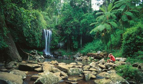 tamborine national park tourism events qld