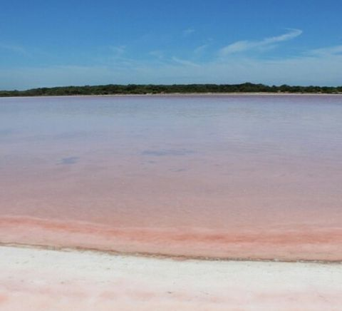 Great Ocean Road - Melbourne to Adelaide drive - coorong pink lake