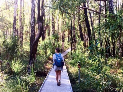 Elsey National Park walks