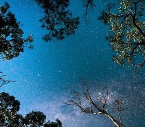Starry night sky, The Grampians. siegelalison