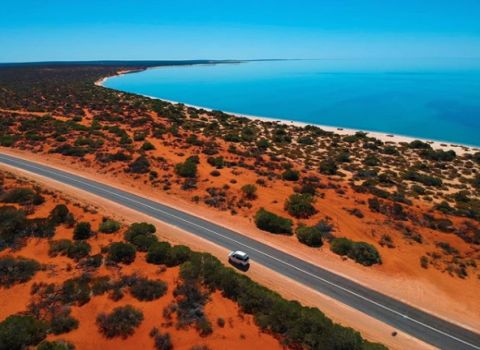 Shark Bay word heritage area